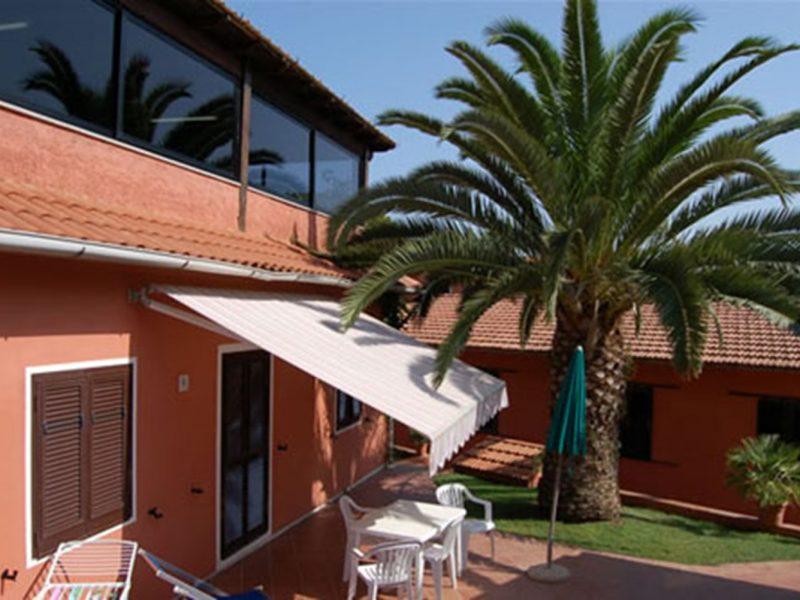 Villa Franca vakantiewoning palmboom