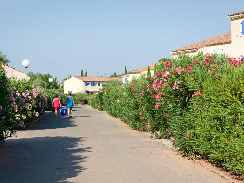 Le Clos des Oliviers vakantiepark