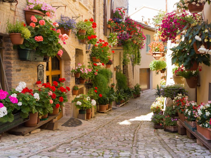 Bloemenrivièra stad bloemen