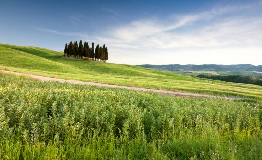 10 top bestemmingen in Toscane!