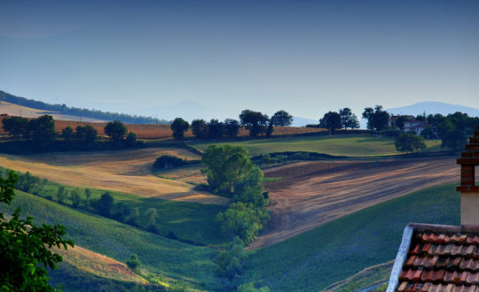 3x luxe agriturismo's in de Marche
