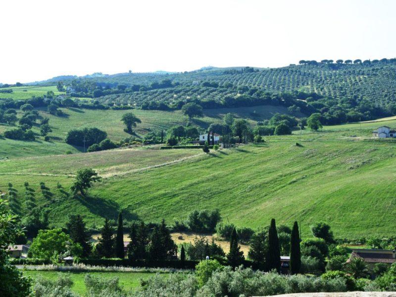 agriturismo wijnveld