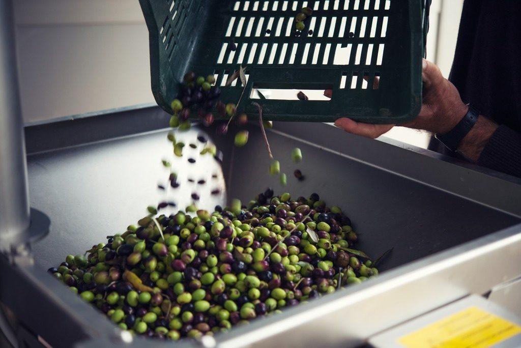 Charme & Quality olijfolie proeverij
